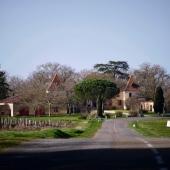 | 🌸 Le printemps ❄️ ||  Ces dernières semaines, le printemps s'est doucement installé sur le Domaine et les bourgeons ont commencé à s'ouvrir. Comme tous nos confrères viticulteurs, cette semaine nous avons été confrontés à un épisode de gel ❄️  Cela fait partie de la vie d'agriculteur et des aléas de notre activité 💪🏼  Il est encore trop tôt pour en connaître l'impact sur la production de cette année 🙏🏼  #boireuncanoncestsauverunvigneron   📷 @bennie.std   #chateaulaballe #armagnacisback #armagnac #armagnaclaballe #laballe #eaudevie #resistance #exode #moments #ugniblanc #baco #folle #spirits #parleboscq #wine #winelovers #gascogne #gascon #vigne #vine #vineyard #history #story #leslandes #landes #basarmagnac #spring