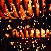 | ENTRAILLES 🦴| . Sous le ventre de l'alambic, au cœur du brasier 🔥 . Under the fire place of the alambic, hot spot☄️ . 📸 @sugaar_content  . #alambic #still #eaudevie #raisin #armagnacisback #armagnac #laballe #armagnaclaballe #feu #braise #chaud #ventre #coeur