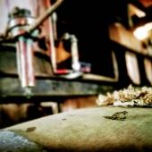 """  FROGGY 🇫🇷  . Quand la nature se joue des clichés et revendique le """"made in France""""! 🐸 . When nature plays with clichés and claims """"fabriqué en France""""! 😉 • #madeinfrance #france #armagnac #armagnacisback #froggies #french #local #spirit"""